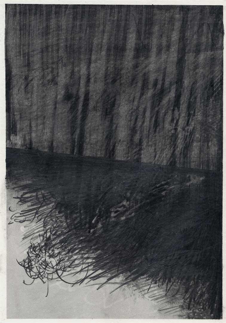 Untitled [Todesstreifen/ Schlesischer Busch] – 29,7 x 21 cm – Graphite drawing on photo-laserprint – 2015 – Inventory # 2015.P.FG.A4.V.0010