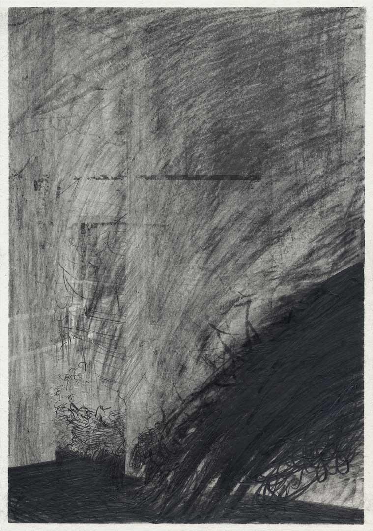 Untitled [Todesstreifen/ Schlesischer Busch] – 29,7 x 21 cm – Graphite drawing on photo-laserprint – 2015 – Inventory # 2015.P.FG.A4.V.0007